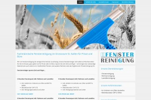 fensterreinigung_sg1200